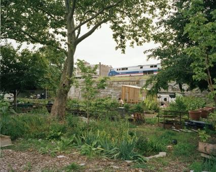 La Finca del Sur, Bronx