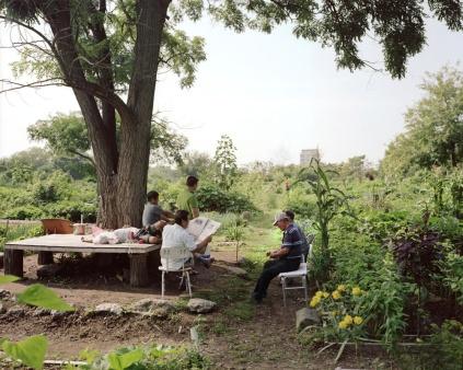 Kissena Corrida Community Garden