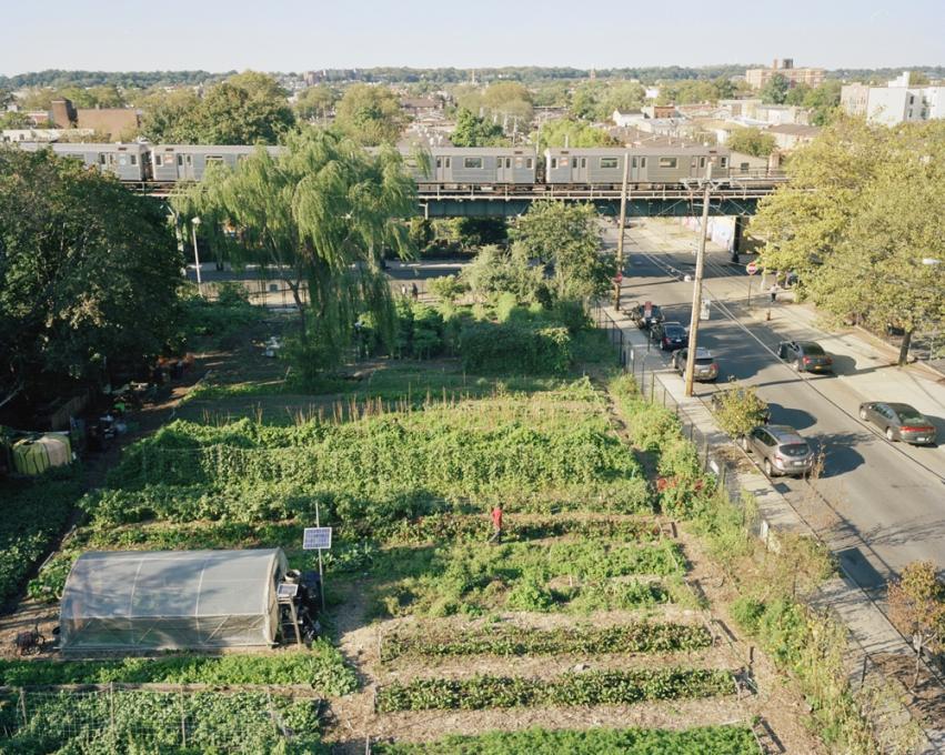 East New York Farms!, Brooklyn