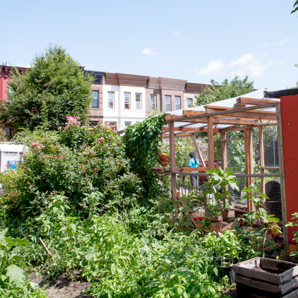 Bed-Stuy Farm (Brooklyn Rescue Mission)